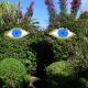 Experience the magical ANIMA garden